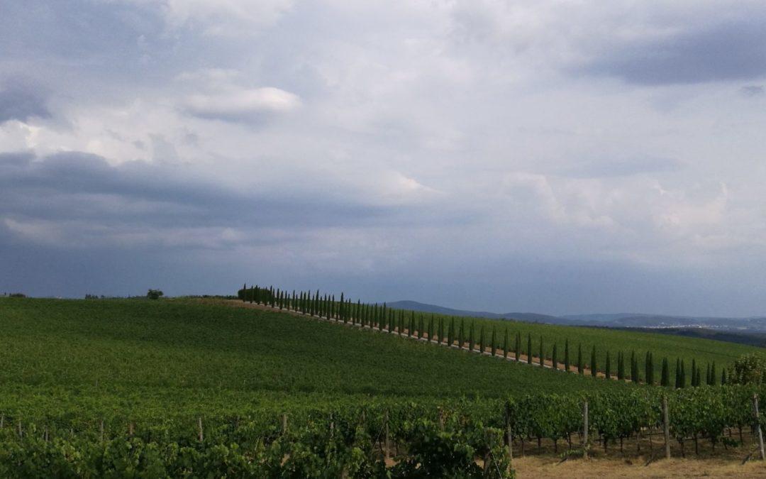 Monte Luco - Villa di Sotto