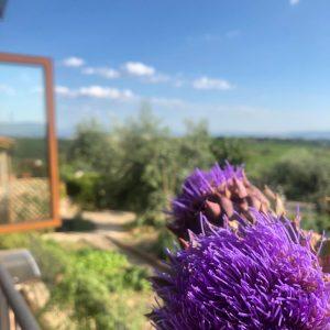 Chèque cadeau un bonjour X6 - Villa di Sotto